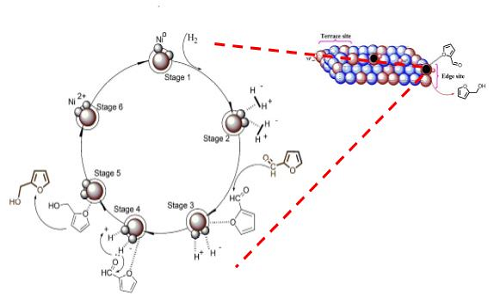 Novel Magnetic Nanoparticles Catalyst